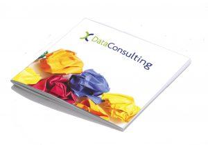 DataConsulting brochure
